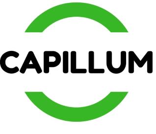capillum recyclage des cheveux